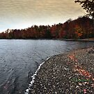 New York's Salmon river reservoir  IV by PJS15204