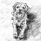 Ernie by Barnaby Edwards