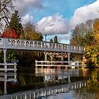 Autumn Colours At Whitchurch Toll Bridge by IanWL