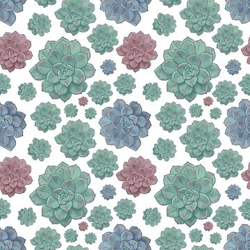 Gorgeous Pastel Succulent Plant Print by annaleebeer