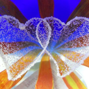 Hearts Entwined  by angel1