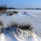 Fresh Snowdunes by ienemien