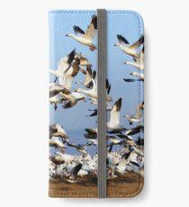 Snow Geese Take Flight iPhone Wallet/Case/Skin