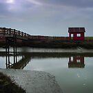 Don Edwards San Francisco Bay National Wildlife Refuge by BMV1