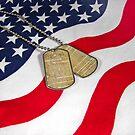 American Freedom by Maria Dryfhout