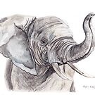 Elephant by Meaghan Roberts