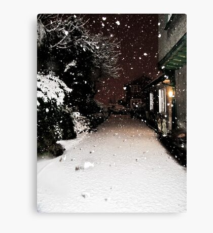 Pure Snowfall Canvas Print
