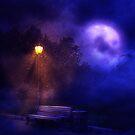 Straßenlaternen in der Nacht von AnnArtshock