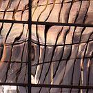 Silken Glass by Lynn Wiles
