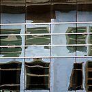Windows on Windows by Lynn Wiles