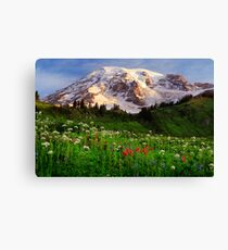 Rainier Wildflowers Canvas Print