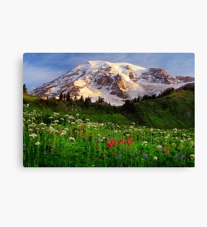 Rainier Wildflowers Canvas Print