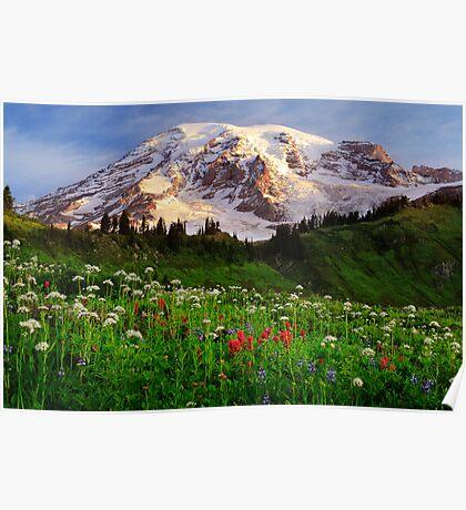 Rainier Wildflowers Poster