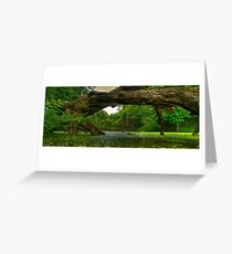 Fontanel Forest Greeting Card