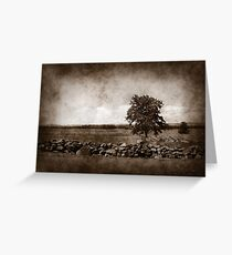 silence on the battlefield Greeting Card