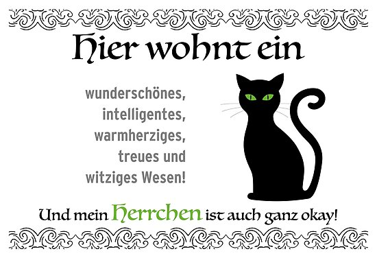 No matter which breed: The cat is the queen in the house. For cats owners master by qwerdenker