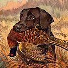 Vintage Labrador Hunting  by Happy Dog Swag