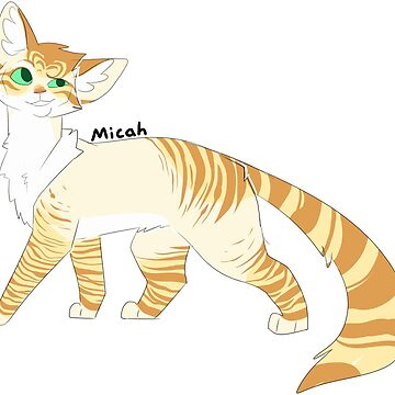 Micah by Draikinator