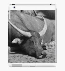 Sleeping Buffalo iPad Case/Skin