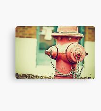 Addiction to Firehydrants Canvas Print