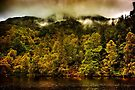 Autumn Mists by Karl Williams