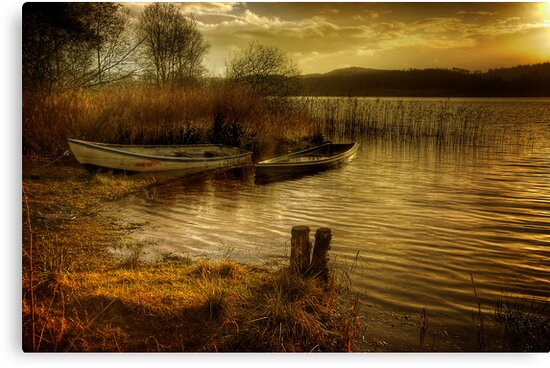 The Boats by Karl Williams
