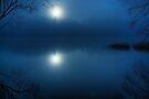 Clair de Lune by Karl Williams