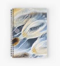 Bryozoa Spiral Notebook