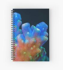 Acropora Spiral Notebook