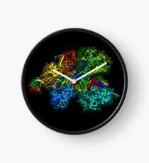 CRISPR Cas9 Clock