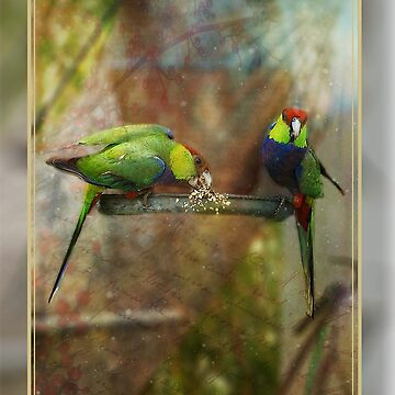 Red Capped Parrots by JuliaKHarwood