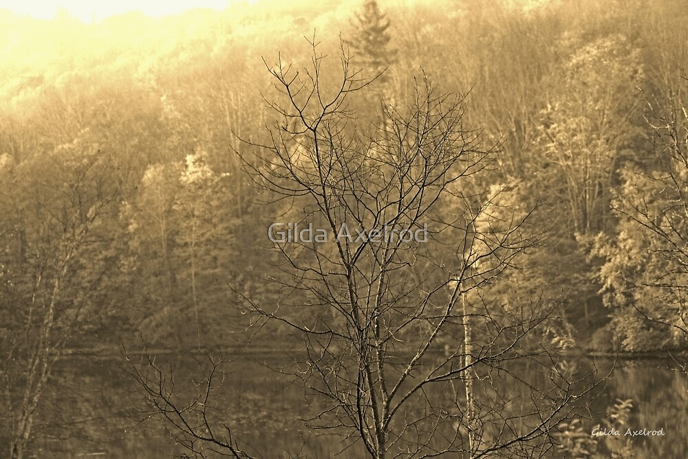 Autumn Morning at the Lake in Sepia by Gilda Axelrod
