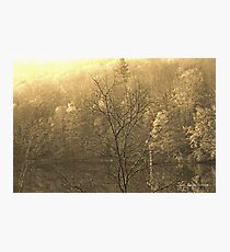 Autumn Morning at the Lake in Sepia Photographic Print