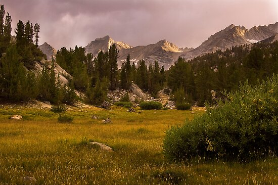 Meadows and Mountains by Justin Mair