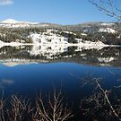 Christmas Day Payette Lake 2009 by Janet Houlihan