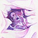 The100RatProject 099 by Anaïs Chesnoy