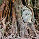 Buddha Head. by bulljup