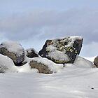 It's Winter in New England! by John  Kapusta