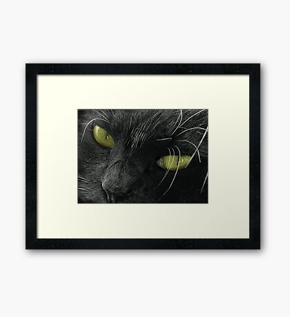 Grimalkin Framed Print