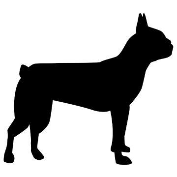 Boston terrier black by Designzz