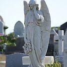 Waverley Cemetery, Sydney - beautiful angel by BronReid