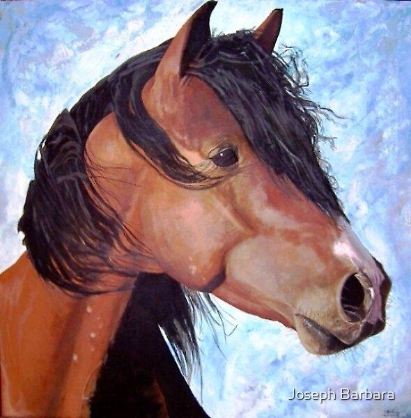 Arabian Stallion by Joseph Barbara