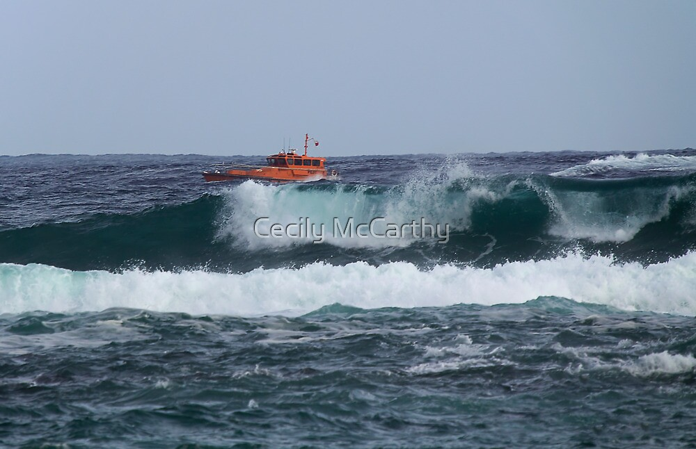 Wyuna - Port Phillip Sea Pilots Launch by Cecily McCarthy
