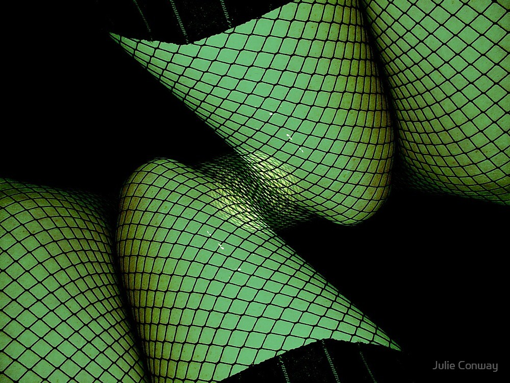 Fishnets Gone Wild by Julie Conway