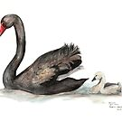 Black Swan and Baby by Meaghan Roberts