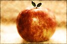 An Apple a Day  by Elaine Manley