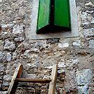 Left Opened  by Mojca Savicki