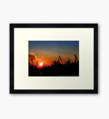July Sunset - Montana, USA Framed Print