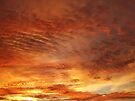 """""""Tangarine Dawn"""" by debsphotos"""