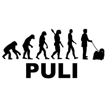 Puli evolution  by Designzz